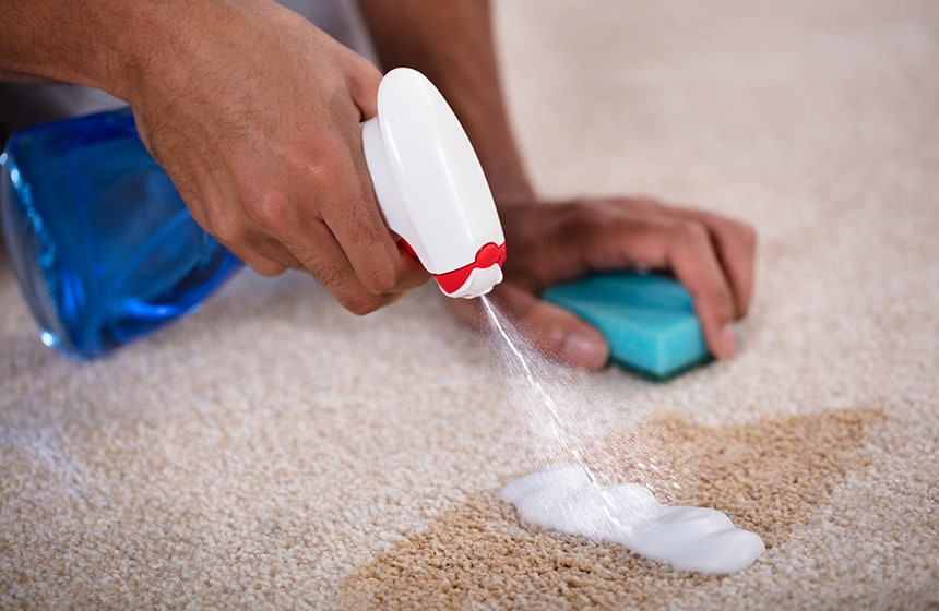 How to Get Dried Coffee Stains Out of Carpet